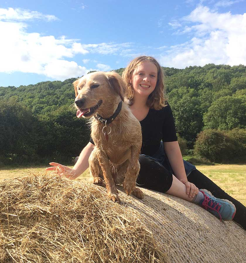 No pet passport? No probs with a dog-friendly cottage