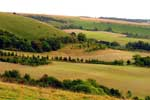 North Wessex Downs